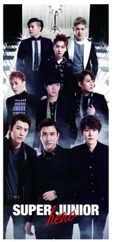 SUPER JUNIOR CD DVD アルバム HeRO.jpg